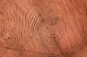 木材の素材 [FYI00926456]