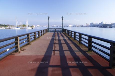 東浜桟橋と緑の島(左)と摩周丸(右)の素材 [FYI00927027]