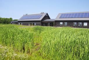 サロベツ湿原センターと太陽光発電の素材 [FYI00928648]