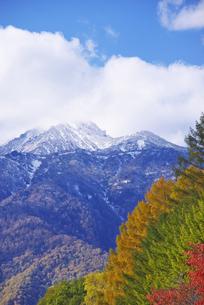 夕張山地の秋の素材 [FYI00929264]