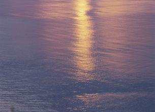 光る海面の素材 [FYI00930260]