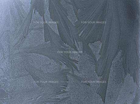 霜の素材 [FYI00930520]