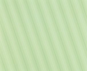 変わりガラス/ストライプの素材 [FYI00930548]