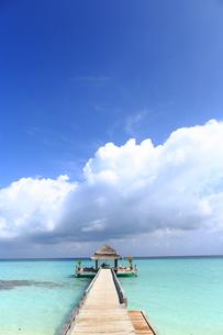 モルディブの海と青空と桟橋の素材 [FYI00933464]
