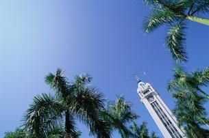 U.S.A. Honoluluの素材 [FYI00934468]