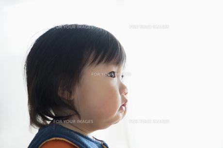 見上げる赤ちゃんの横顔の素材 [FYI00934734]