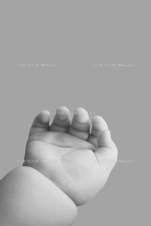 赤ちゃんの手の素材 [FYI00934791]