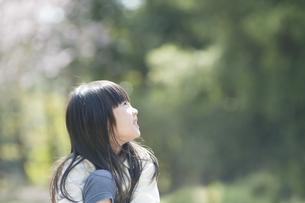 見上げる女の子の素材 [FYI00934821]