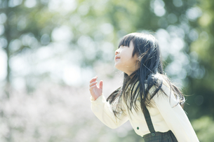見上げる女の子の素材 [FYI00934856]