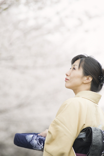 見上げる和服の日本人女性の素材 [FYI00934902]