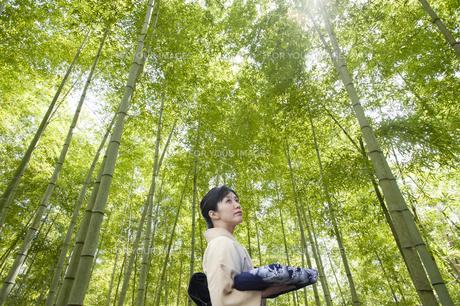 竹林の和服の日本人女性の素材 [FYI00934969]