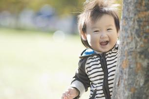 樹から覗く笑顔の赤ちゃんの素材 [FYI00935152]
