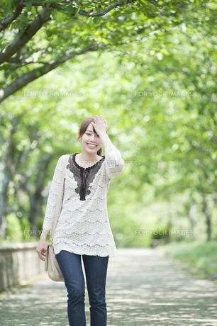 新緑の並木道を歩く女性の素材 [FYI00935630]