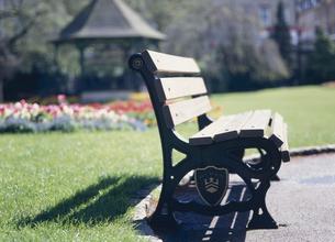 ベンチと緑の芝生の素材 [FYI00935756]