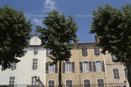建物と並木の素材 [FYI00937074]
