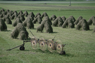 田園に並ぶ干し草 ドイツの素材 [FYI00938523]