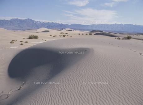 砂丘の素材 [FYI00939147]