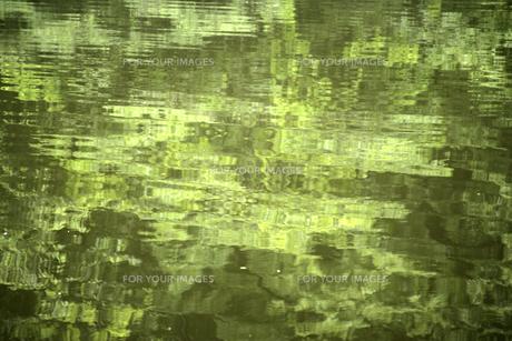 緑の水面の素材 [FYI00939686]