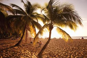 夕暮れのビーチの素材 [FYI00940533]