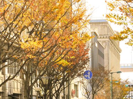 神戸旧居留地のイメージの写真素材 [FYI00941826]