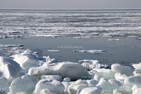 接岸した流氷の写真素材 [FYI00941853]