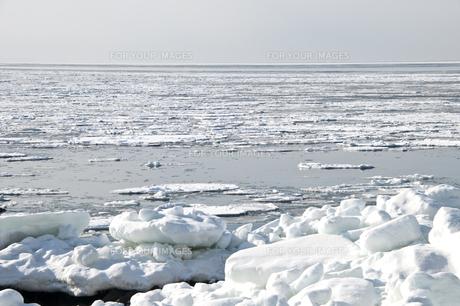 接岸した流氷の写真素材 [FYI00941854]