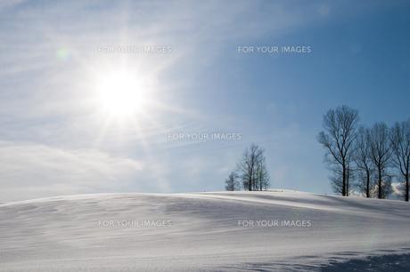 冬晴れの空と雪原の写真素材 [FYI00941856]