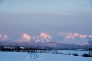 夕映えの雪山 十勝岳連峰の写真素材 [FYI00941867]