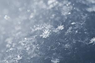 雪の写真素材 [FYI00942066]