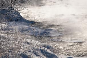 冬の川面の写真素材 [FYI00942069]