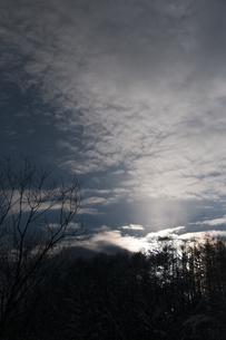 冬の朝日の写真素材 [FYI00942076]