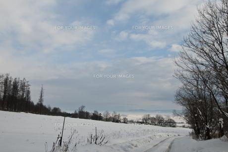 冬景色の写真素材 [FYI00942077]