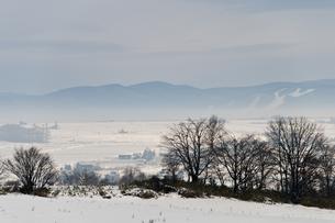 冬の朝の写真素材 [FYI00942078]