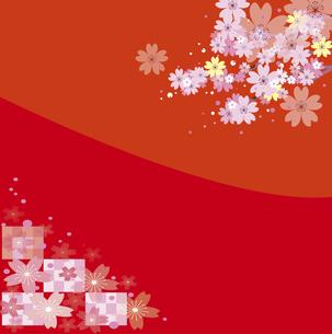 和風な桜の赤い背景のイラスト素材 [FYI00942266]