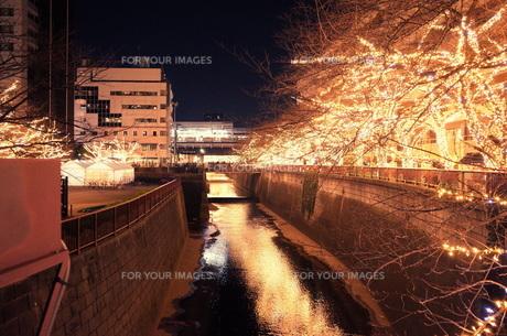 灯の写真素材 [FYI00942316]