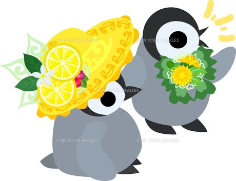おしゃれで可愛い赤ちゃんペンギンのイラストのイラスト素材 [FYI00942337]