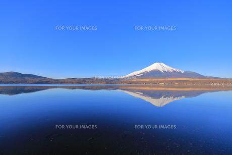 富士山の写真素材 [FYI00942424]