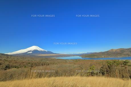 富士山の写真素材 [FYI00942432]