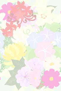 色々な花で作られたテクスチャのイラスト素材 [FYI00942545]