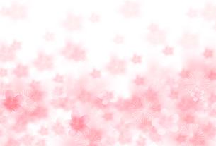 桜のイラスト素材 [FYI00942576]