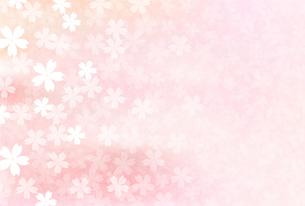 桜のイラスト素材 [FYI00942579]