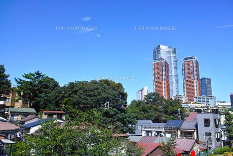 東京都港区元麻布の高台から見た六本木方面の景観の写真素材 [FYI00942653]