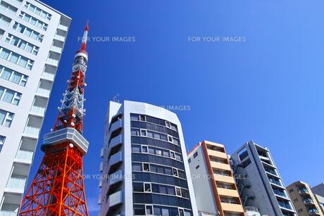 東京都港区東麻布、国道1号線からマンション群の写真素材 [FYI00942657]