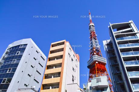東京都港区東麻布、国道1号線からマンション群の写真素材 [FYI00942658]