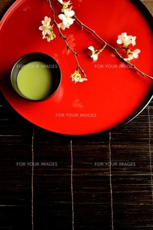 赤い漆塗りのお盆の上の抹茶と桜の写真素材 [FYI00942678]