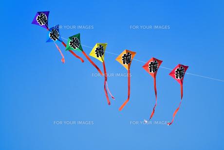 伝統的な連凧の写真素材 [FYI00942731]