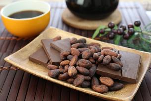 カカオ豆とチョコレートの写真素材 [FYI00942904]