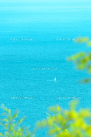 須磨の海と小さなヨットの写真素材 [FYI00942944]