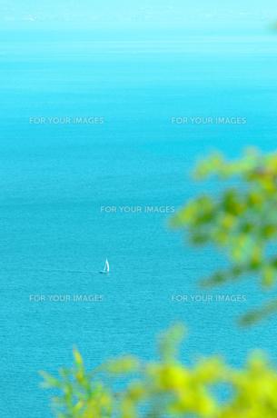 須磨の海と小さなヨットの写真素材 [FYI00942945]