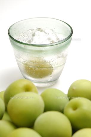 梅と梅酒の素材 [FYI00943291]